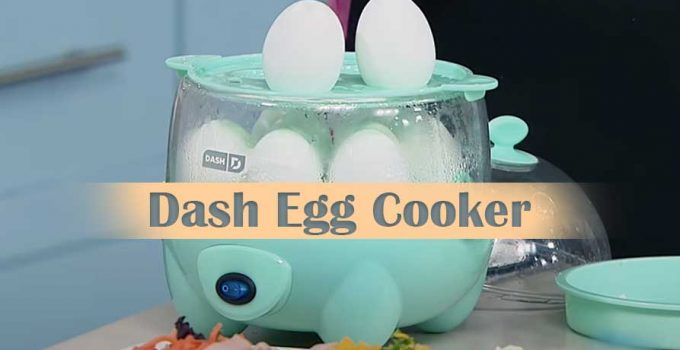 Amazing things you need to know about Dash Egg Cooker