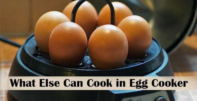 What Else Can I Cook in My Egg Cooker in easy ways!