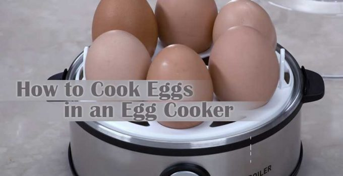 How to Cook Eggs in an Egg Cooker – Learn 3 Main Types